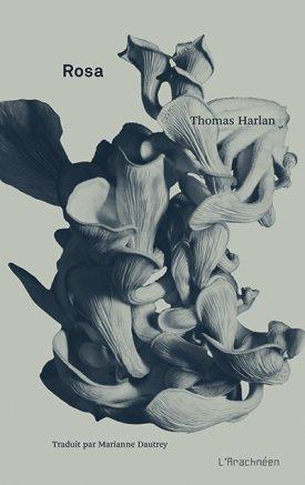 Rosa / Thomas Harlan